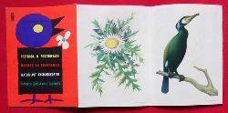 """Ruch Verlag  Werbebroschüre / Verkausbroschüre für Ruch-Produkte """"Natur auf Ansichtskarten / Przyroda W Pocztowkach / Nature in Postcards"""