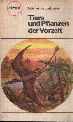 Krumbiegel, Günter;  Tiere und Pflanzen der Vorzeit