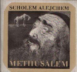 Alejchem, Scholem:  Methusalem Die Geschichte eines Pferdes