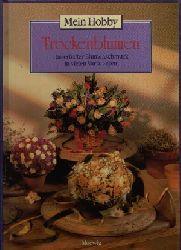 Dr. Gallmeister, Petra; Trockenblumen Dauerhafter Blumenschmuck in vielen Variationen 2. Auflage