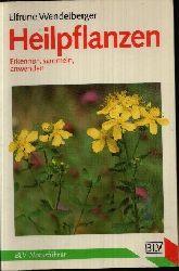 Wendelberger, Elfrune:  Heilpflanzen : erkennen, sammeln, anwenden BLV-Naturführer ; 813