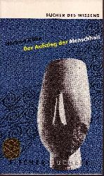 Kühn, Herbert:  Der Aufstieg der Menschheit