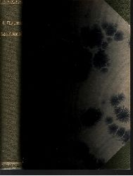 Gustave Flaubert: Salammbó