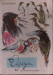 Klatt, Edith; Djiyin ein Indianermädchen 3. Auflage