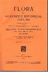 K. Goebel:  Flora oder Allgemeine Botanische Zeitung (24. Band - Drittes Heft)