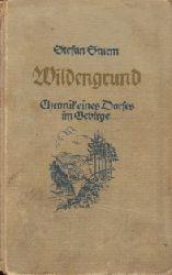 Sturm, Stefan; Wildengrund - Chronik eines Dorfes im Gebirge 12.-27. tausend