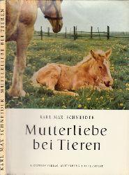 Schneider, Karl Max;  Mutterliebe bei Tieren