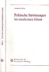 Meier, Andreas;  Politische Strömungen im modernen Islam - Quellen und Kommentare