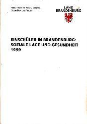 Autorengruppe;  Einschüler in Brandenburg: Soziale Lage und Gesunheit 1999