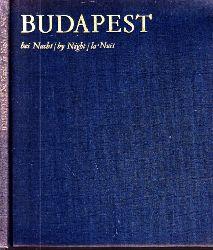 Czeizing, Lajos;  Budapest bei Nacht