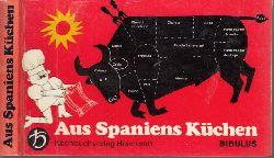 Bibulus; Aus Spaniens Küchen - Die originellsten Gerichte einer kulinarischen Spanienreise Einband und Illustrationen: Annegert Fuchshuber 1. Auflage