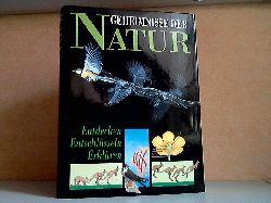 Rees, Robin; Geheimnisse der Natur - Entdecken, Entschlüsseln, Erklären