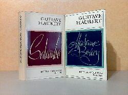 Flaubert, Gustave; Madame Bovary - Salambo 2 Bücher
