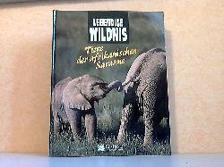 Illfeld, Sybille A., Claire Knollmeyer und Christiane Landgrebe; Lebendige Wildnis: Tiere der afrikanischen Savanne - Elefanten, Löwen, Nashörner, Strauße, Giraffen, Schakale, Gazellen, Hyänen