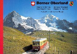 Autorengruppe;  Bernauer Oberland