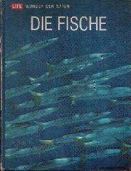 Ommanney, Francis Downes:  Die Fische Wunder der Natur
