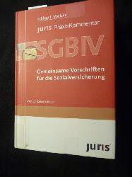 (Hrsg.) Rainer Schlegel  *Juris PraxisKommentar SGB . - Teil:   Buch 4.,  Gemeinsame Vorschriften für die Sozialversicherung