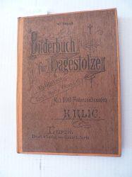 (Hrsg.) Vacano E.M.  Bilderbuch für Hagestolze. V. Band - Redigirt von Emile Mario Vacano. Mit 100 Federzeichnungen von K. Klic.