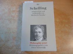 Boenke, Michaela - Sloterdijk, Peter  Schelling - Philosophie jetzt!