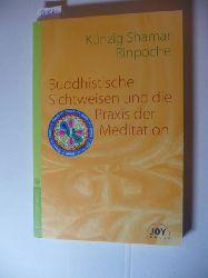 Chos-kyi-blo-gros (Verfasser)  Buddhistische Sichtweisen und die Praxis der Meditation
