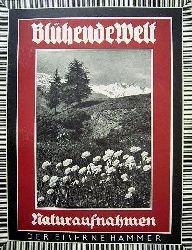 Langwiesche, Karl Robert.  Blühende Welt. 47 Landschaftsaufnahmen.