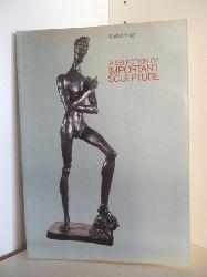 Ausstellungskatalog  A Selection of Important Sculpture (English Edition)