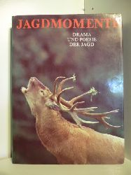 Text und Fotogarfie von Slava Stochl  Jagdmomente. Drama und Poesie der Jagd