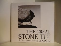 A Photographic Study by A. A. Dutton  The Great Stone Tit