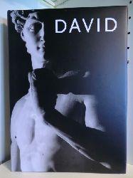 Photographs by Aurelio Amendola. Text by Antonio Paolucci  David. Michelangelo
