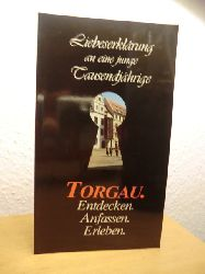 Wagner, Rainer:  Torgau. Liebeserklärung an eine junge Tausendjährige