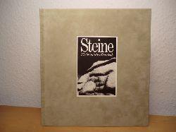 Röcke, Lisa (Anthologie) / Schmidt, Bertram (Gestaltung) / Däschlein, Heribert (Redaktion)  Steine. Ein literarisches Bilderbuch