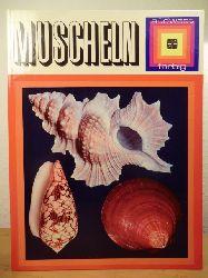 Angeletti, Sergio (Hrsg.)  Muscheln. Glück aus den sieben Meeren. Ein farbenfroher Überblick über Herrlichkeiten aus der See mit vielen Farbbildern