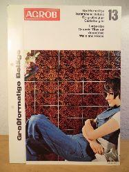 AGROB Fliesen Aktiengesellschaft  Großformatige keramische Beläge für großzügige Gestaltungen / Large-size Ceramic Tiles for decorative Walls and Floors