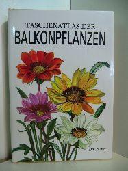 Hieke, Karel und Jirina Kaplická:  Taschenatlas der Balkonpflanzen
