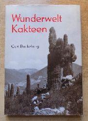 Backeberg, Curt  Wunderwelt Kakteen.