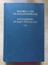 Ruhland, W.  Handbuch der Pflanzenphysiologie - Der Stickstoffumsatz. Deutsch - Englisch.
