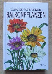 Hieke, Karel  Taschenatlas der Balkonpflanzen.