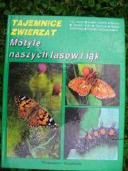 Tajemnice Zwierzat Motyle naszycg lasow i lak