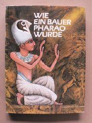 Jiri Tomek/Josef Kremlácek (Illustr.)/Ingrid Kondrková (Übersetz.) Wie ein Bauer Pharao wurde und andere ägyptische Märchen