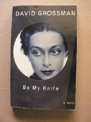 David Grossman  Be My Knife. A Novel