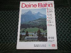 Deine Bahn 8/93