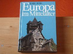 Bosl, Karl  Europa im Mittelalter. Weltgeschichte eines Jahrtausends.