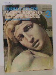 Luciano Berti  Luciano Berti Forma e colore. Michelangelo. Le Tombe Medicee. 3