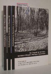 3 Hefte Archäologische Denkmäler in Hessen Heft 35, 38 und 39