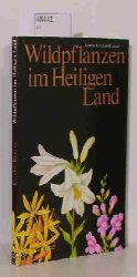 Kreckel-Renner, Leonie  Kreckel-Renner, Leonie Wildpflanzen im Heiligen Land