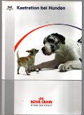 Kastration bei Hunden Royal Canin Wissen und Respekt