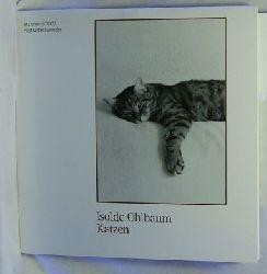 Katzen 2003 : Postkartenkalender