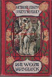 Blüthgen, Victor  Der Weg zum Glück. Fünf Erzählungen für Knaben,Mit vier Bildern in Farbendruck von E. Zimmer