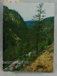 Meister, Dr. Georg  Jahrbuch des Vereins zum Schutz der Bergwelt,49. Jahrgang - Vormals Verein zum Schutze der Alpenpflanzen und -Tiere
