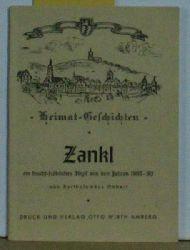 Bartholomäus Gebert  Zankl,Ein feucht - fröhliches Amberger Idyll aus der Zeit von 1800- 1900